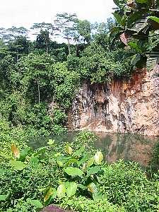 bukitbatok_nature_park2s