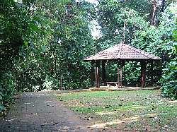 bukitbatok_nature_park3s